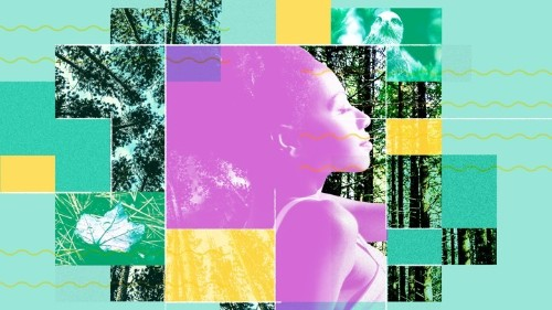 'Forest Bathing': How Microdosing on Nature Can Help With Stress