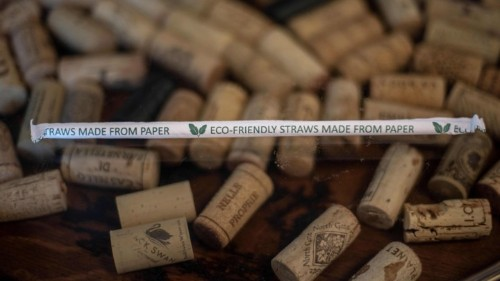Paper Straws Won't Stop Climate Change