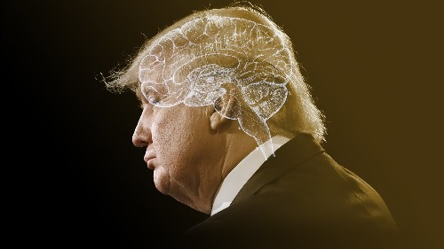 Is Something Neurologically Wrong With Donald Trump?
