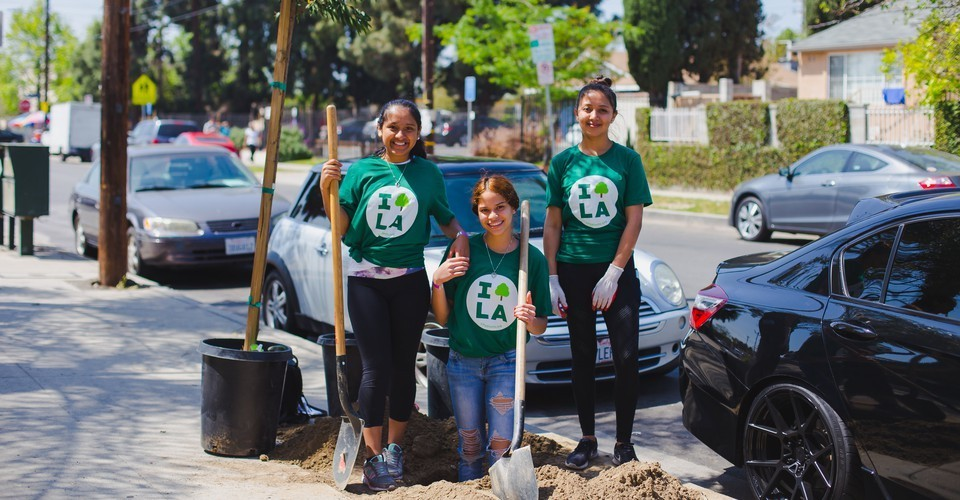 A Plan to Grow 90,000 Trees in Los Angeles
