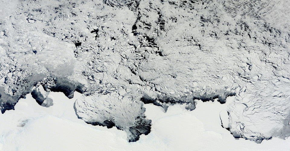 A Cosmic Rarity Found in Antarctic Snow