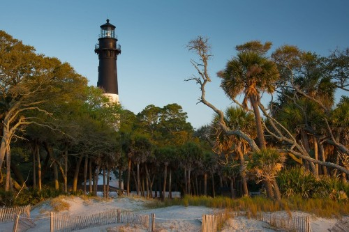 South Carolina: Images of the Palmetto State