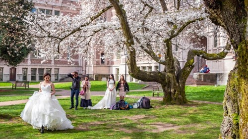 The College Campuses That Moonlight as Wedding Venues