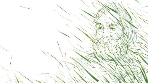 Walt Whitman's Guide to a Thriving Democracy