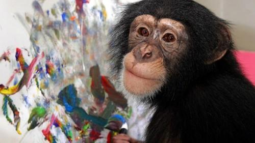 Seeing Spirituality in Chimpanzees