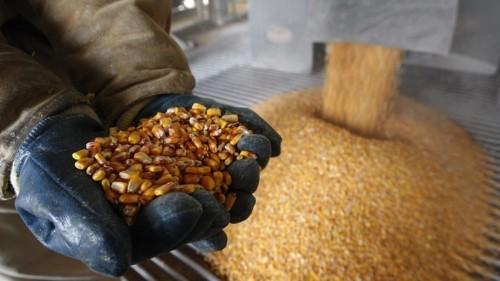 Stop the Ethanol Madness