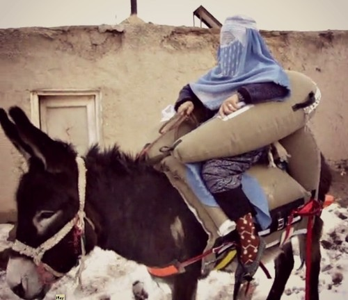 A Donkey Ambulance for Women in Labor in Afghanistan