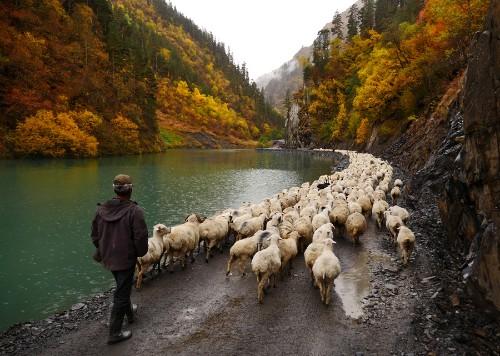 The Shepherds of the Tusheti Mountains