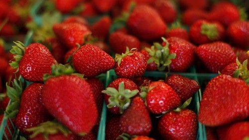 The Toxic Chemicals Used to Grow Strawberries