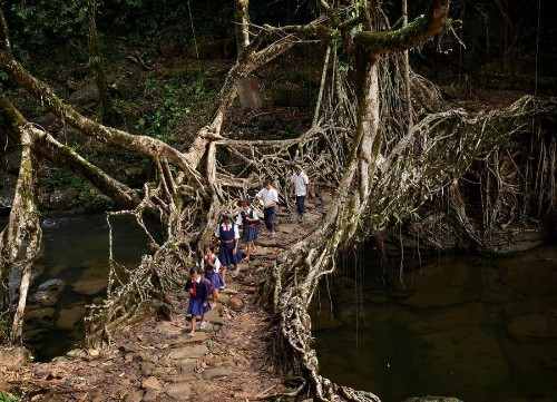Meghalaya: The Wettest Place on Earth