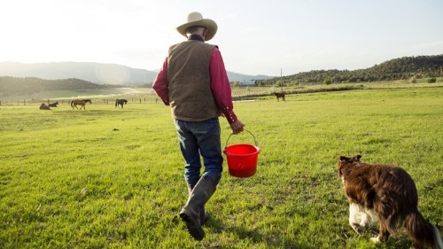 The Three Personalities of America