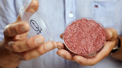 The Farcical Battle Over What to Call Lab-Grown Meat