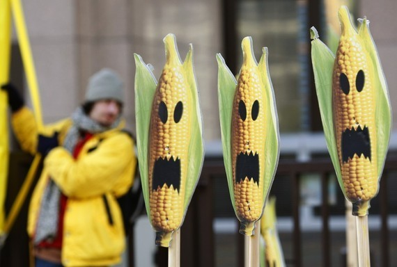 Don't Fear the 'Frankenfish': Why Rich Americans Should Drop Their War on Genetically Modified Foods