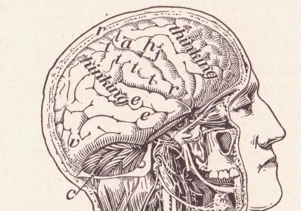 Science  - Magazine cover