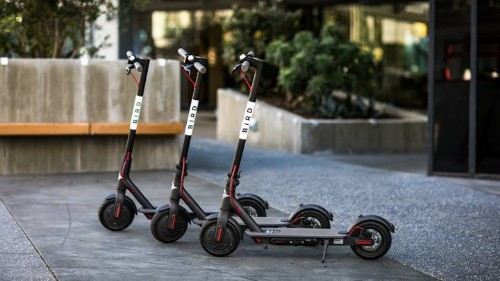 Who Charges Those Electric Bird Scooters?