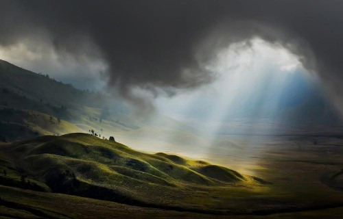 National Geographic Photo Contest 2013, Part II