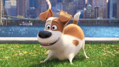 The Secret Life of Pets Is Redeemed by Good Dogs