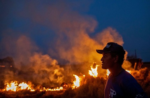 Photos: The Burning Amazon Rainforest