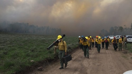 The Forest Service Is About to Set a Giant Forest Fire—On Purpose