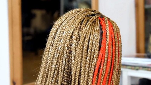 Female student charged with assault. Her alleged beef? 'Cultural appropriation' of hair braids.