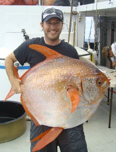 Tire-Size Moonfish Surprises Scientists With an Ability Never Seen Before in Fish