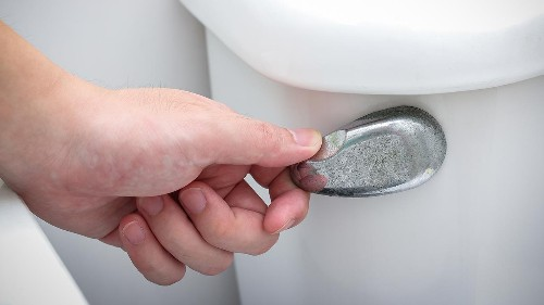 California becomes first state to pass water law limiting toilet flushes, showers