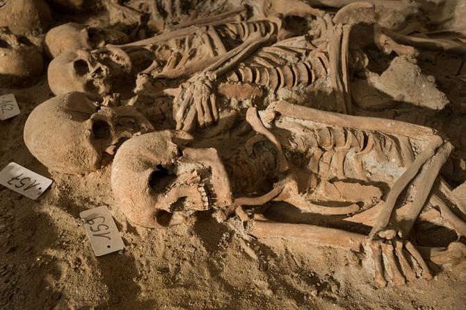 Gruesome Find Unearthed Under Paris Supermarket