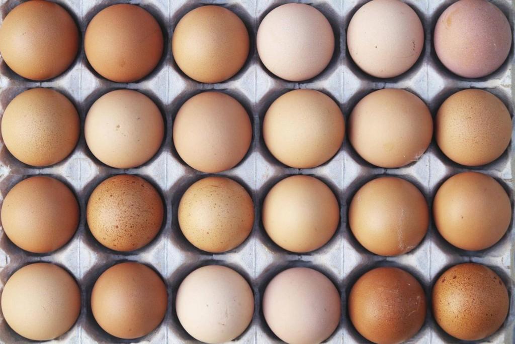 Free-range, organic, omega-3: What type of eggs should I buy?