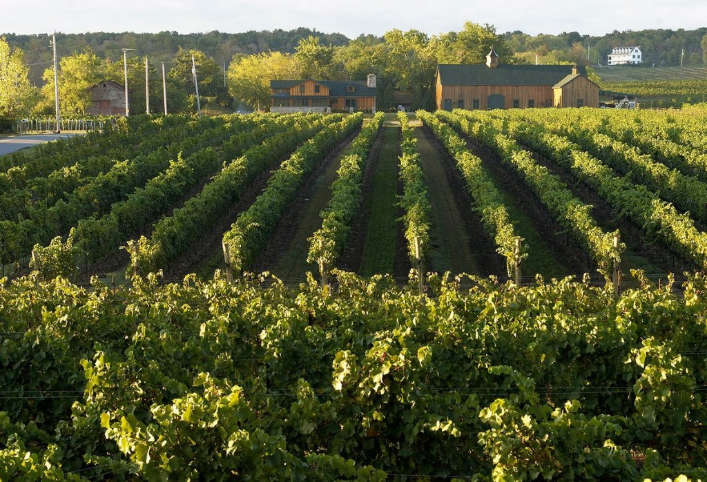 Travel news: Niagara's wine region opens up to visitors