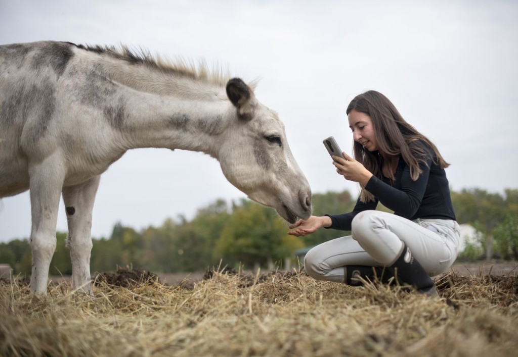 Pitching in: Student guides GTA animal sanctuary through COVID-19 pandemic
