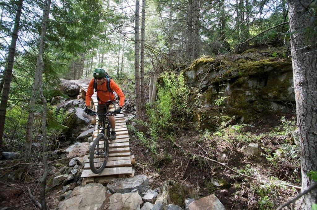 Mountain Biking For Beginners  cover image