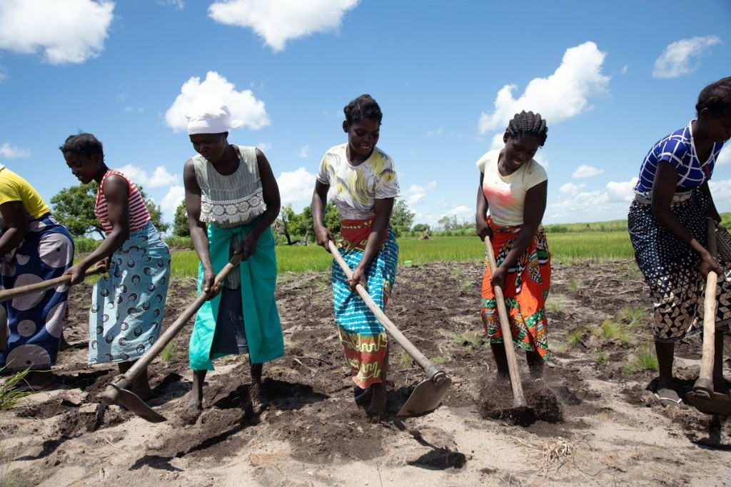 What can Mozambique's farmers teach the world about survival in a changing climate?