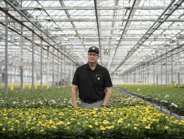 Ontario's flower producers hit hard by pandemic as the industry wilts