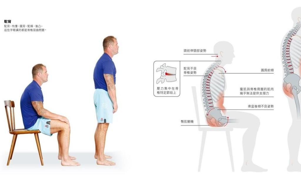 《久坐人靈活解方》:看似無害的放鬆坐姿,卻將身體導入一個扭曲、致病的方向