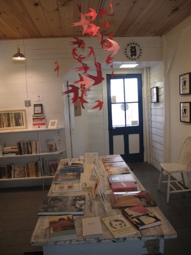 Notes from a Bookshop: February, or the Folly of Love