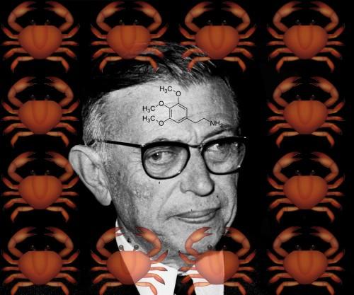 Sartre's Bad Trip