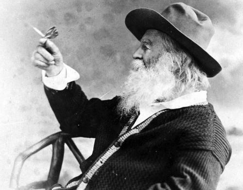 Whitman's Secret Novel