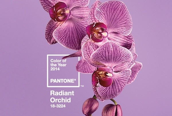 And the Pantone Color of the Year Is…