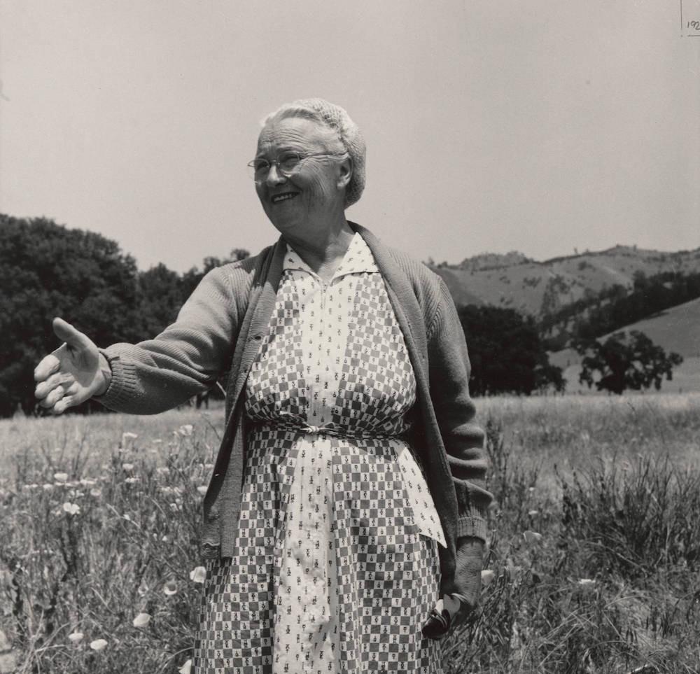 Dorothea Lange's Angel of History