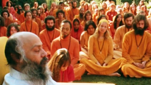 Why Are We So Fascinated by Cults?