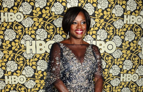 Viola Davis Says the Diversity Problem Is 'Not With the Oscars'