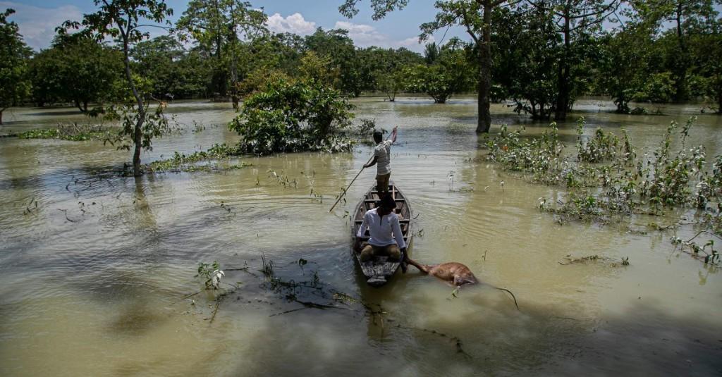 At Least 221 People Killed as Heavy Monsoon Rains Pelt South Asia