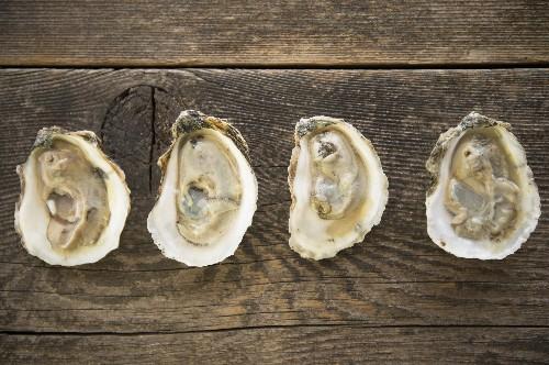 Florida Deaths Linked to Eating Raw Shellfish