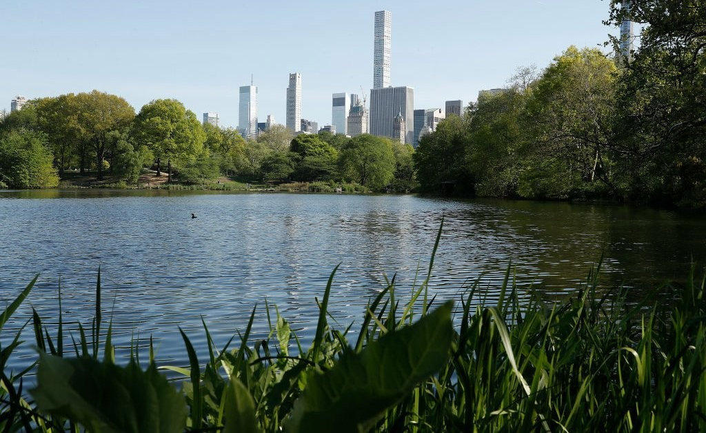 White Woman Who Called Police on a Black Man at Central Park Apologizes, says 'I'm Not a Racist'