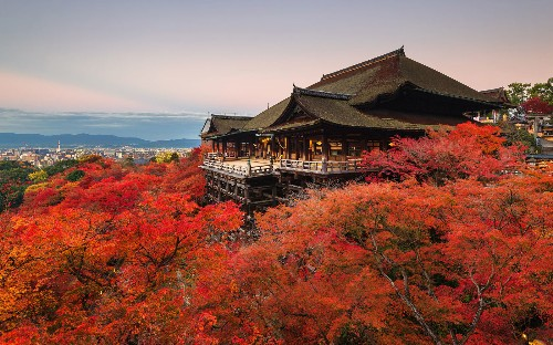 Visit Japan's most beautiful temples without even leaving home: