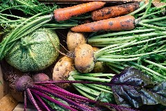 Discover fall vegetables