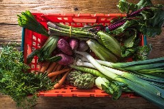 Discover fruit vegetables