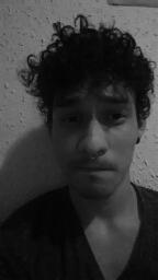 Avatar - mauricio ibañez