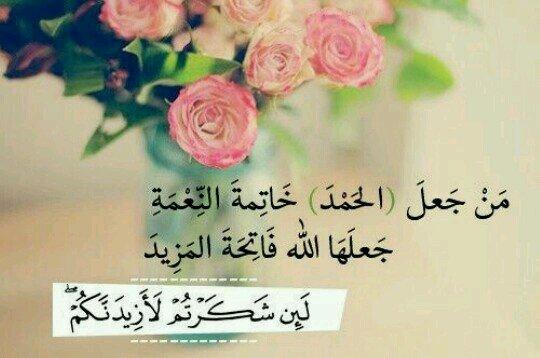 زهرة البنفسجؤعهعء - cover