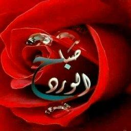 Jamil Alnajjr - cover